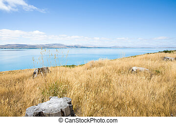 Lake Pukaki, South Island NZ - Lake Pukaki, Canterbury,...