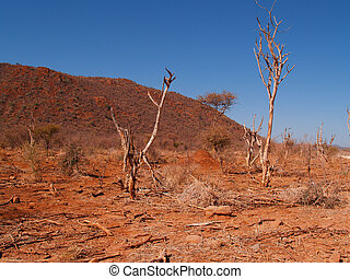 South African Landscape. - African landscape, dry, and...