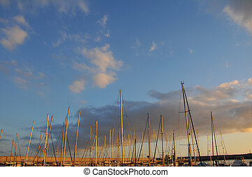 Sailing Boat Mast - Sail Boats Masts In Port With Sunset...