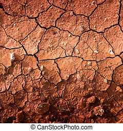 Dry cracked earth texture - Dry cracked earth due to drought