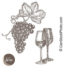 Bunch of grapes and wine glasses. Vector illustration in sketch