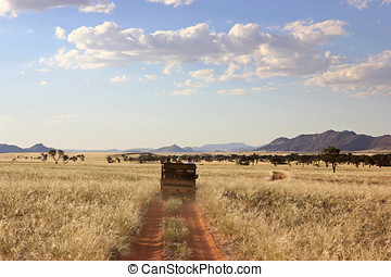Safari in Namibia - A group of tourists during a namibian...