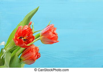 Bunch of red and yellow tulips with wooden background -...