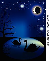 Lake with swans in the night sky