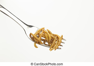 mealworms on a fork - edible roasted and spiced mealworms on...