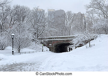 Central Park after snowstorm, NYC