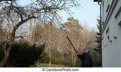 man cut tree branch