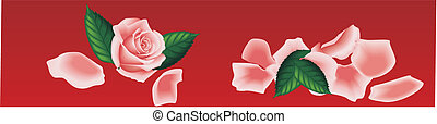 pink rose banner - Vector Pink Roses Heart on Red Background...