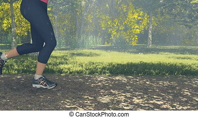 Runner legs and feet close-up - Woman jogging in the forest,...