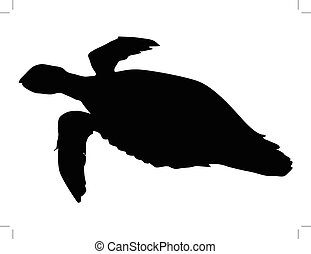 sea turtle - silhouette of sea turtle