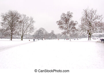 Snow landscape - Image of a park in the snow