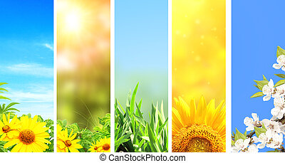 Set of spring banners