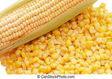 orelha, fresco, milho, estanhado, milho