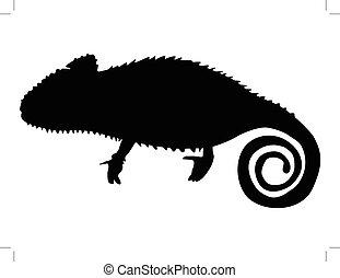 chameleon - silhouette of chameleon