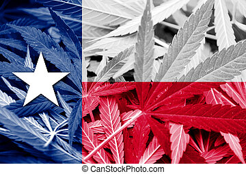Texas State Flag on cannabis background Drug policy...