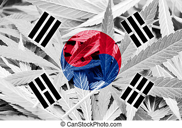 South Korea Flag on cannabis background. Drug policy....