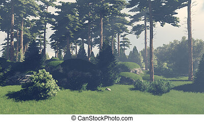Sunny day in the pine forest 2 - Beautiful woodland scenery...