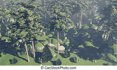 Flight over pinewood 2 - Top view of the beautiful pine...
