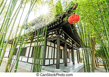 Scene of the chinese bamboo garden