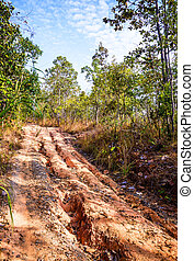 Red soil road damaged