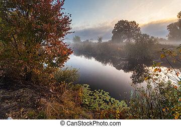autunno, lago, banca, Mattina