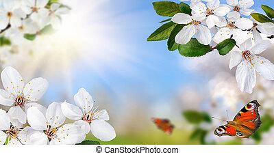 Frühling, paradies