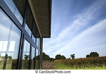 Veranda - Glass veranda surrounded by vineyards near...