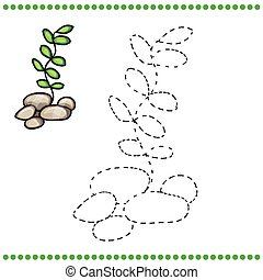 Connect the dots and coloring page - grass