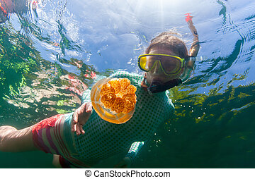 Tourist snorkeling in Jellyfish Lake - Underwater photo of...