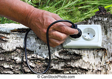 power receptacle and switchplug on a tree - ecological...
