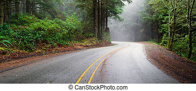 Misty Forest Two Lane Highway Rural Country Coastal Road -...