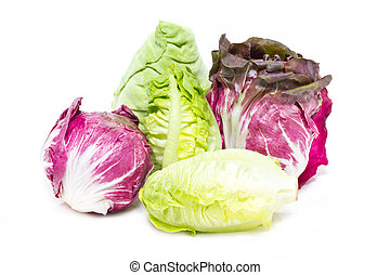 Baby Cos, Radicchio and White Cabbage