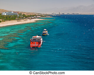 Eilat gulf, Israel Koralovyj coast and kind on coastal...