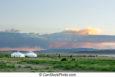 Mongolian landscape in the sunset
