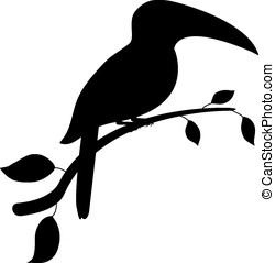 toucan bird - vector, black silhouette of toucan bird...