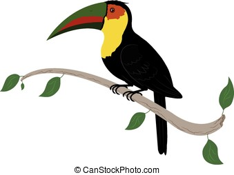 toucan bird - vector, colorful toucan bird on tree branch...