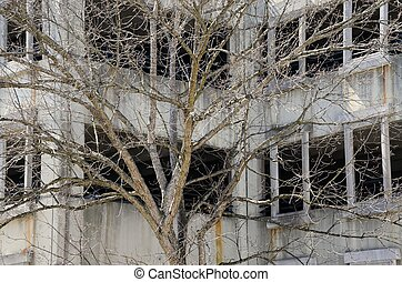 Tree budding near parking deck - Bare tree showing slight...