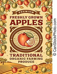 Retro apples poster in woodcut style. Editable vector...