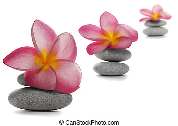 Flowers and Pebbles - Three pebble piles with beautiful pink...