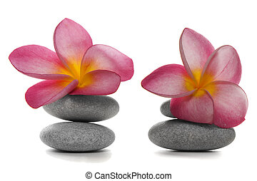 Flowers and Pebbles - Two pebble piles with beautiful pink...