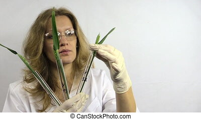 genetically modified plant - scientist woman in white robe...