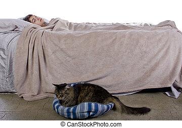 Noisy Housecat - girl unable to sleep because of noisy pet...