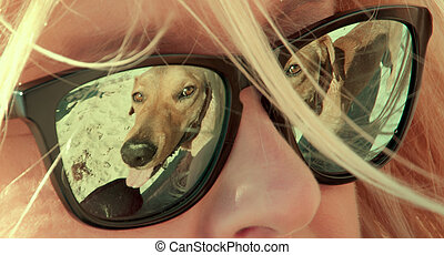 dog playing - reflection on eyeglasses of a dog playing in...