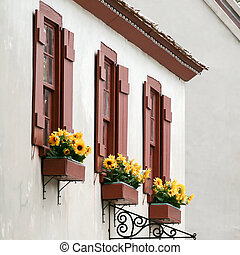 Window boxes in St. Augustine Florida