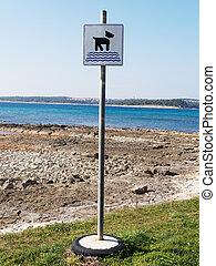 Dog beach - dog beach sign, dogs allowed on beach