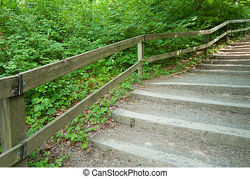 Stairs Nature Park