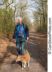 Senior man walking dog in forest - Senior man walking his...