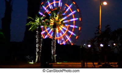 City lights against background of palm trees - Lighted palm...