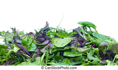 mesclun mix salad - Fresh Salad Leaves Assortment Close Up...