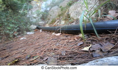Plastic pipe on the earth's surface - Plastic pipe of small...